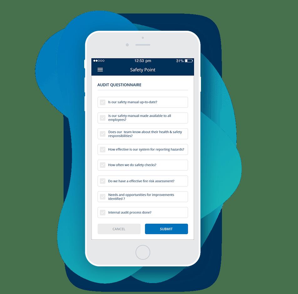 Safety Audit Checklist & Questionnaire